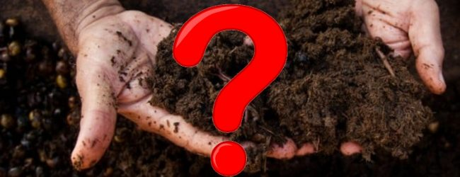 Harmful Bacteria detected in fresh sample of Chinese Org. Fertilizer