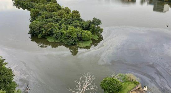 Diyawanna Oya Oil Spill, Intentional?  : Authorities launch investigation