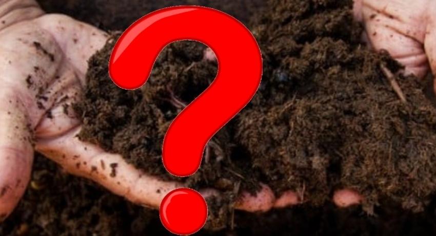 Sri Lanka suspends imports of Chinese Organic Fertilizer
