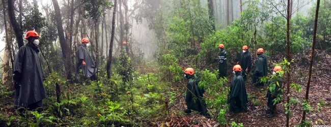 Missing Woman located after 4 days lost in N'Eliya Jungle