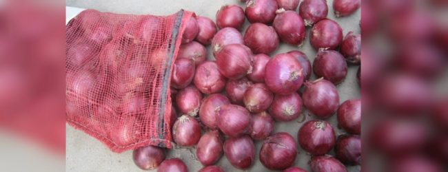 Import levy on big onions increased
