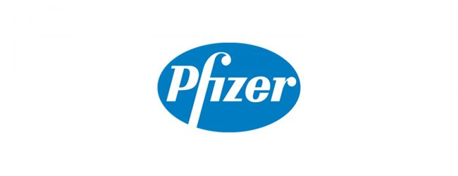 100,000 doses of Pfizer vaccines arrive from Netherlands