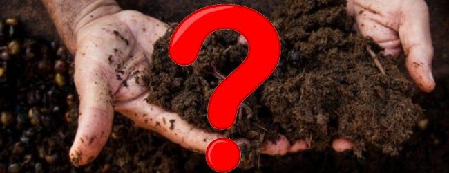 'Erwinia' pathogen detected in Chinese Organic Fertilizer Sample