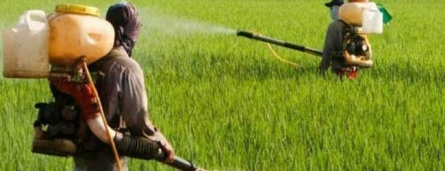 Final decision on importing fertilizer, tomorrow (18)