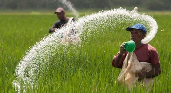 Sri Lanka imports 30,000 MT of organic fertilizer for Maha Season