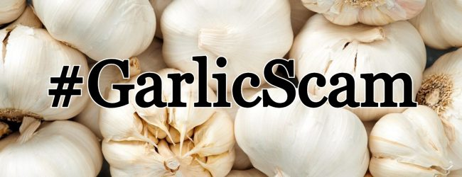 #GarlicScam : Businessman arrested for purchasing garlic in a fraudulent manner