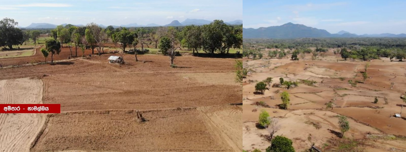 Vast tracts of Agri-land lay barren due to fertiliser crisis