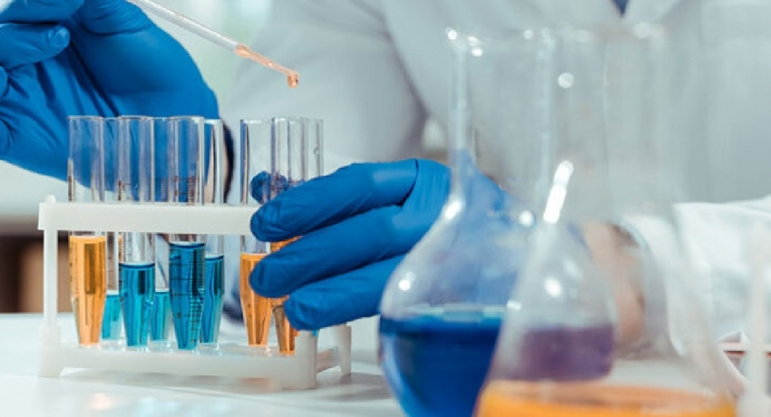 Sri Lankans among top 2% of world's best scientists