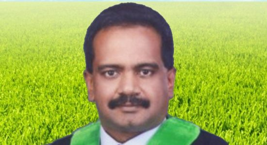 Sr. Prof. Buddhi Marambe removed from all posts with Agri Ministry