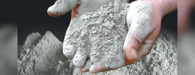 Cement & Flour Prices increased