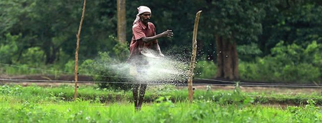 Fertilizer crisis: 141 University professors address letter to President