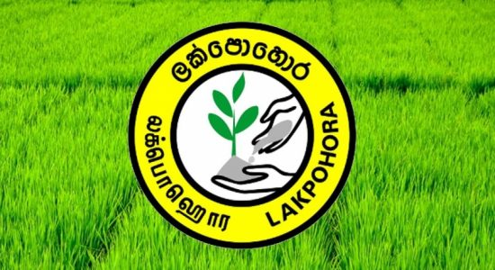 Court order obtained to suspend payments for Chinese Fertilizer