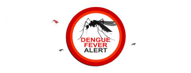 Dengue on the rise across 10 districts; Seek medical care if fever persists for over two days