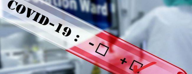 ශ්රී ජයවර්ධනපුර විශ්වවිද්යාලයේ සිසුවියකට කොරෝනා: පානදුර රෝහලේ සේවකයින් PCR පරික්ෂාවට