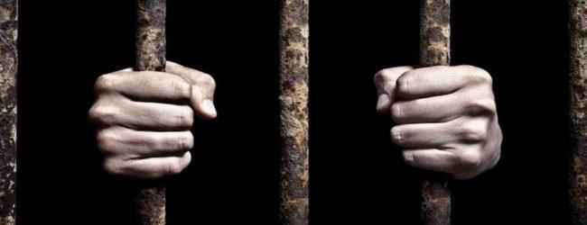 ஏப்ரல் 21 தாக்குதலுக்கு உதவிய மென்பொருள் பொறியியலாளரை 3 வருடங்களாக கண்காணித்து வந்த இந்தியா