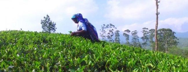 கல்முனை வடக்கு பிரதேச செயலகத்தை தரமுயர்த்தக் கோரி ஆரம்பிக்கப்பட்ட உண்ணாவிரதப் போராட்டம் தொடர்கிறது