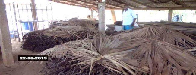 மாற்றுப் பயிர் செய்கைக்கு உடனடியாக மாற முடியாத நிலையில் புகையிலை செய்கையாளர்கள்