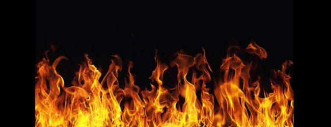 அவன்ற் கார்ட் வழக்கு: மேன்முறையீட்டு நீதிமன்ற உத்தரவிற்கான பிரதி கிடைக்காமையால் மீண்டும் விசாரணை