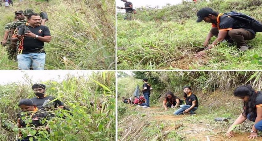 ஃபொக்ஸ் ஹில் மலைத்தொடரில் 2000 மரக்கன்றுகளை நட்ட V-Force குழாத்தினர்