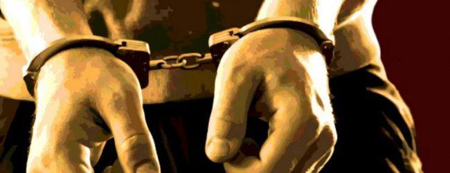 பொலிஸ் அதிகாரிகள் இருவரைத் தாக்கிய சந்தேகநபர் ஒருவர் கைது