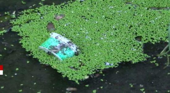 அடுத்த வாரம் முதல் விசேட டெங்கு ஒழிப்பு வேலைத்திட்டம் முன்னெடுக்கப்படவுள்ளது