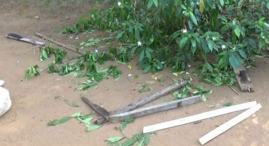 வவுனியாவில் வாள்வெட்டுக்கு இலக்கான 6 பேர் வைத்தியசாலையில் அனுமதி