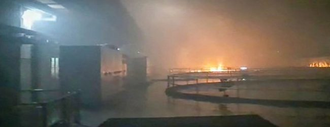 தெலுங்கானா நீர் மின் உற்பத்தி நிலையத்தில் தீ விபத்து: 6 பேரின் சடலங்கள் மீட்பு