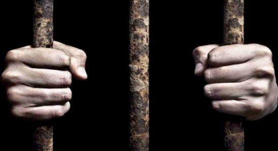 ஆனைவிழுந்தான் ரம்சார் ஈரவலயத்தை சட்டவிரோதமாக துப்புரவு செய்தவருக்கு விளக்கமறியல்