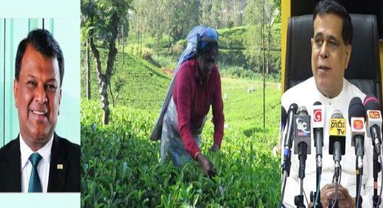1000 ரூபா சம்பளம்: கூட்டு ஒப்பந்தத்தில் இருந்து விலகுவதாக பெருந்தோட்ட நிறுவனங்கள் அறிவிப்பு