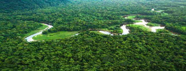 இலங்கை எதிர்கொண்டுள்ள சுற்றாடல் பேரழிவு