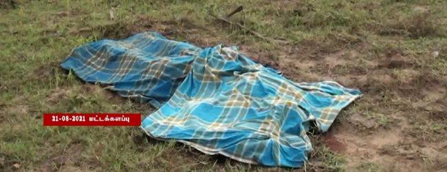 கரடியனாறு – காயங்குடா பகுதியில் காட்டு யானை தாக்கி ஒருவர் உயிரிழப்பு
