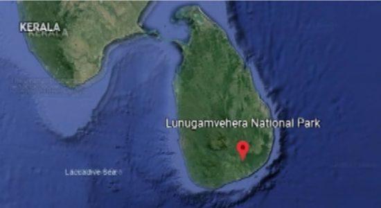 யால சரணாலய பகுதியில் பதிவான நிலநடுக்கத்தால் பாதிப்பில்லை
